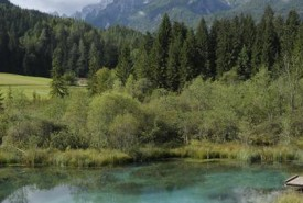 lakes_and_valleys_walking_tour_slovenia_032