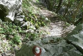 juliana_trail_nw_trail