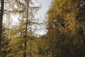julian_alps_peaks_tour_slovenia_063